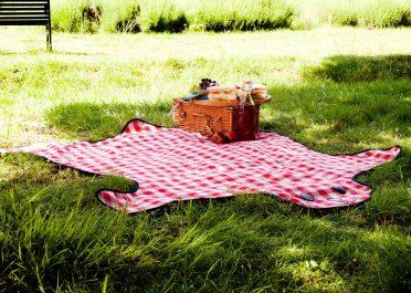 bear-skin-picnic-blanket-in-park