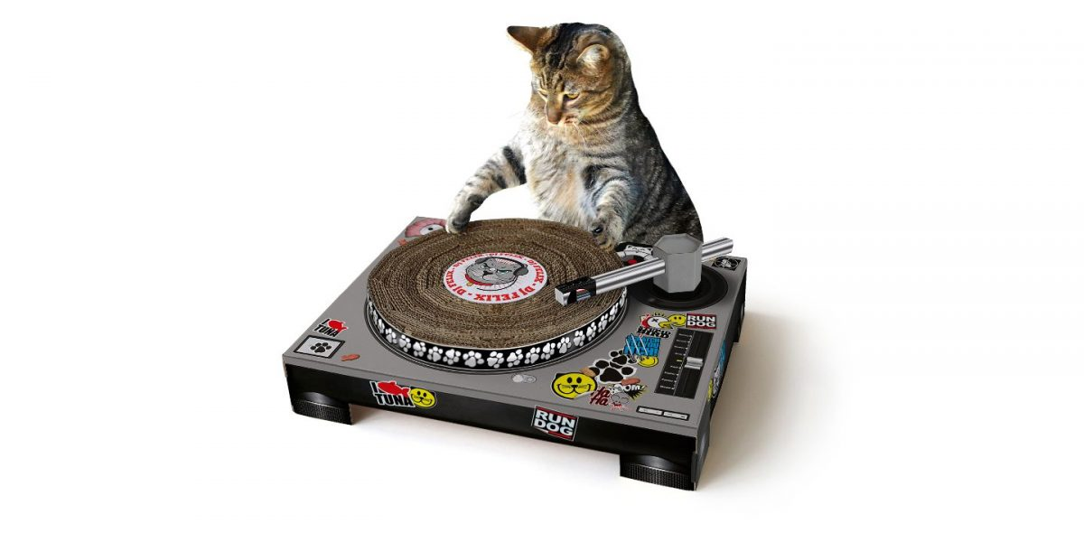 DJ Turntable Cat Scratch