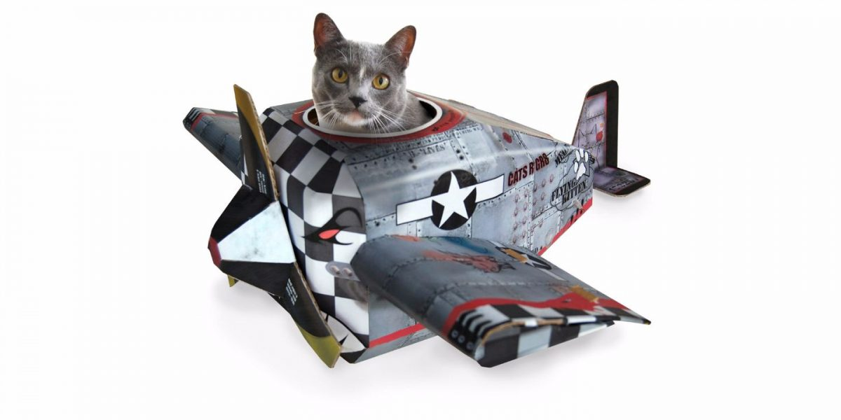Plane Cat Playhouse