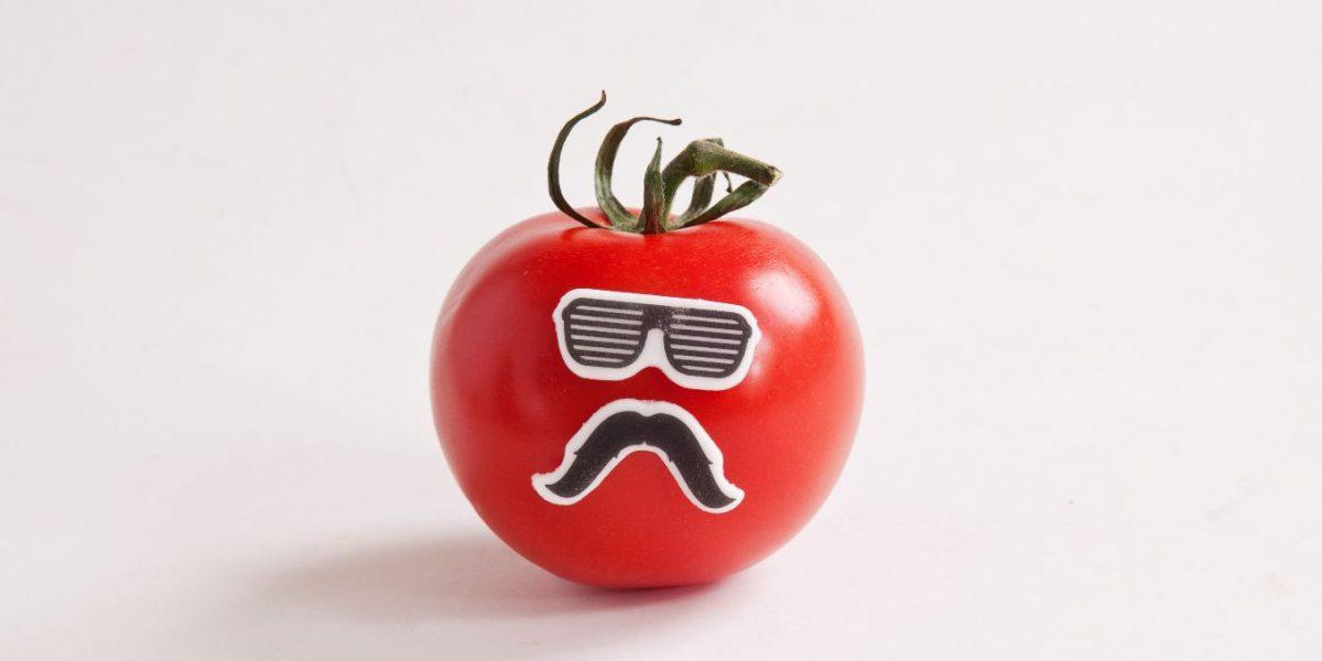 Edible Sugar Disguises